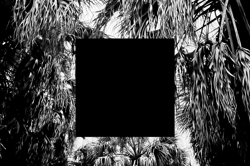 Fort Desoto (black squares) , 2013 [digital c-prints, series of 10]