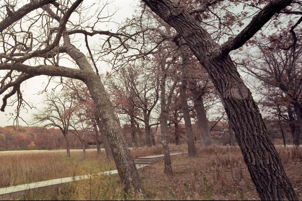 Lake Marion006_edit_web2.jpg
