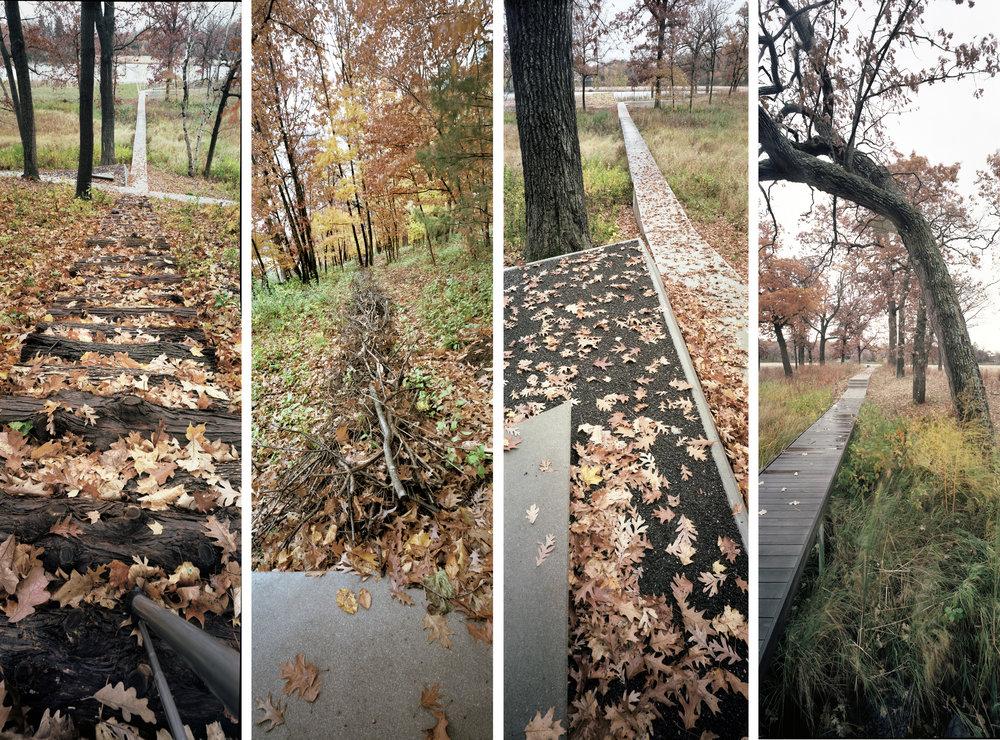 Lake Marion018_edit_web.jpg