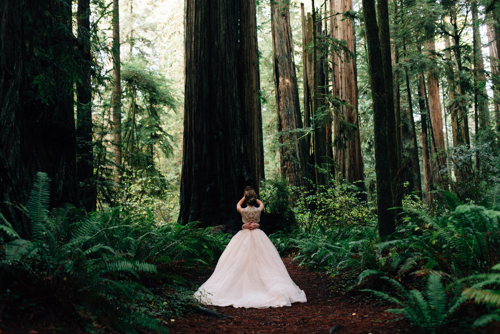 Redwoods Wedding | Blush Dress | Oregon Destination Photographer : Jessicaheronimages.com