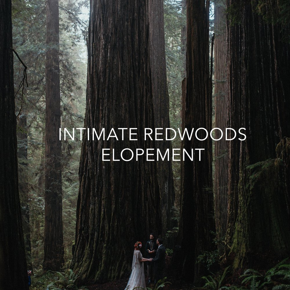 Allexa and Dan Redwoods Elopement 182.jpg