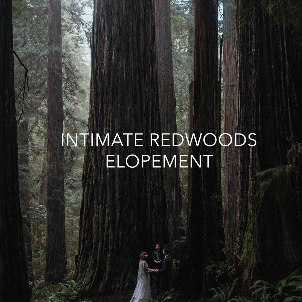 Allexa and Dan Redwoods Elopement 182.jpg