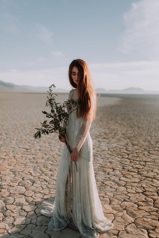 Alvord Desert 099.JPG
