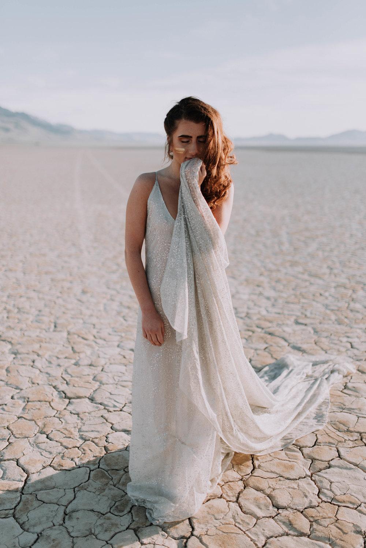Alvord Desert 110.JPG