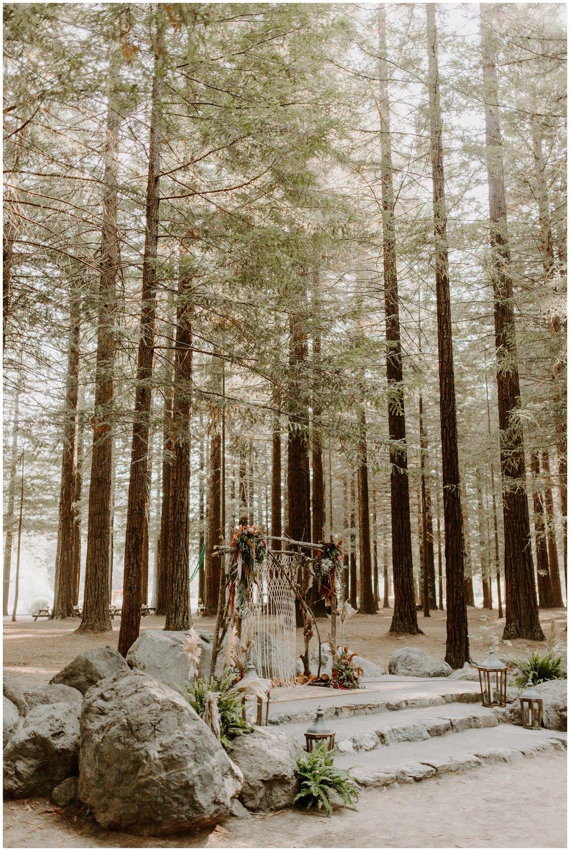 Redwood Festival Wedding Humbolt California - Jessica Heron Images_0029.jpg