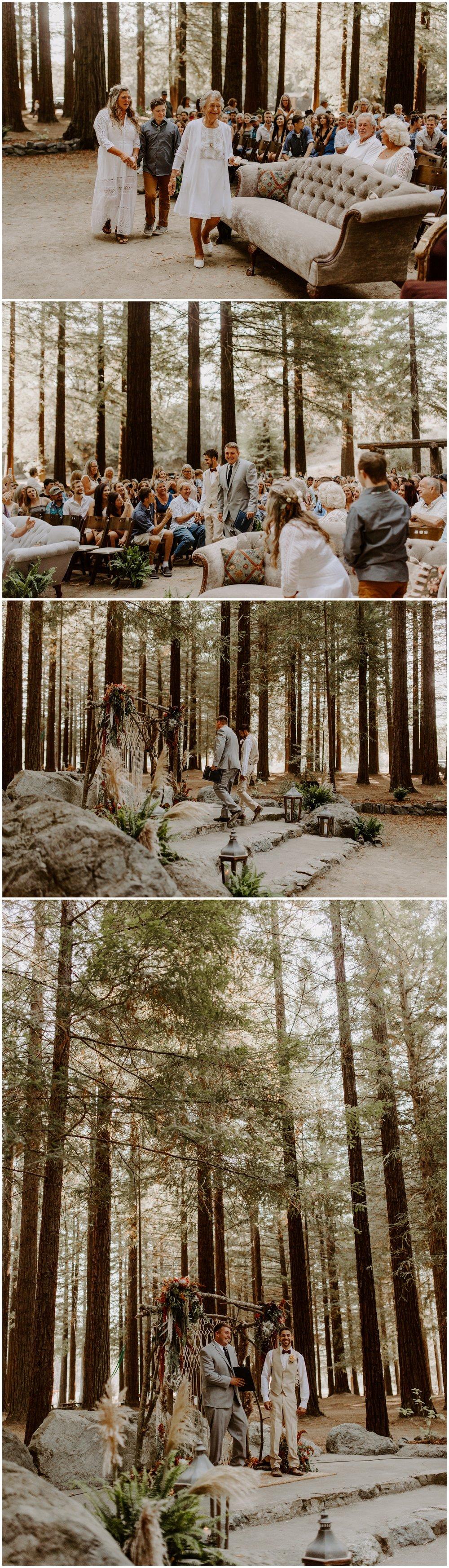 Redwood Festival Wedding Humbolt California - Jessica Heron Images_0031.jpg