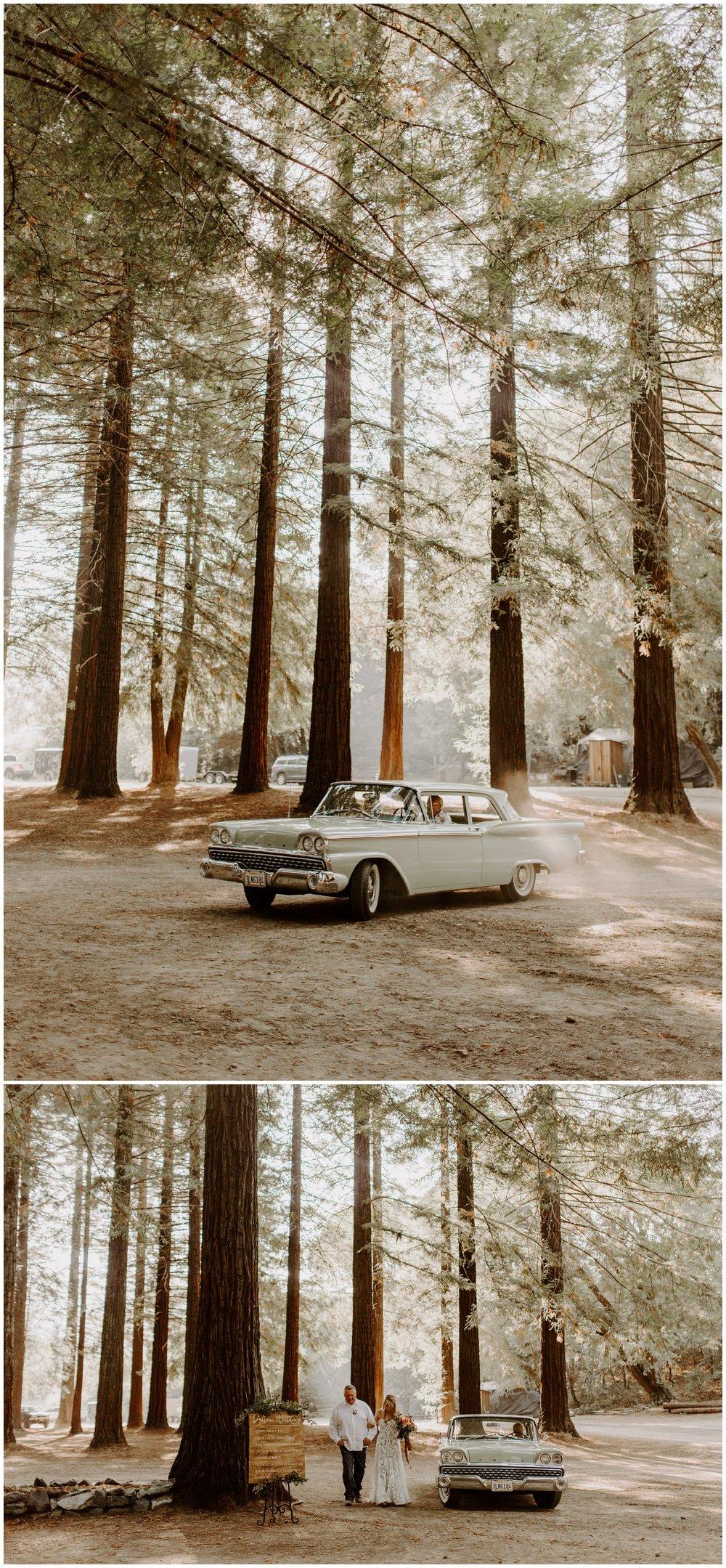 Redwood Festival Wedding Humbolt California - Jessica Heron Images_0035.jpg