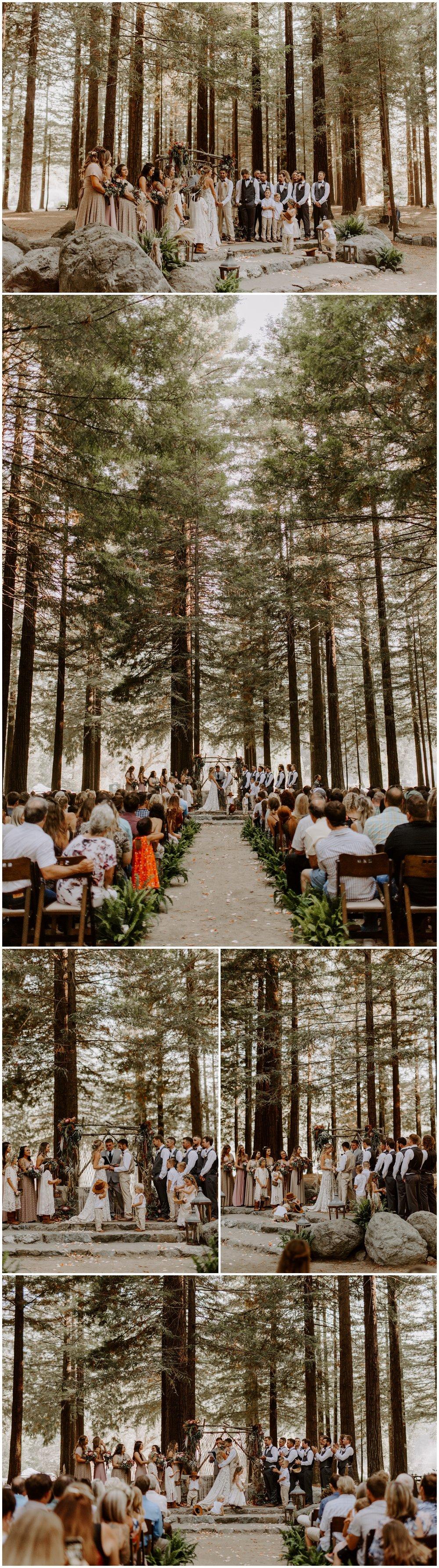 Redwood Festival Wedding Humbolt California - Jessica Heron Images_0037.jpg