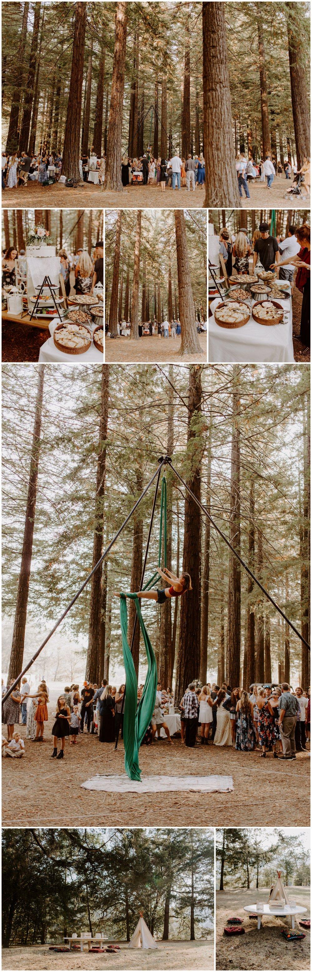 Redwood Festival Wedding Humbolt California - Jessica Heron Images_0076.jpg