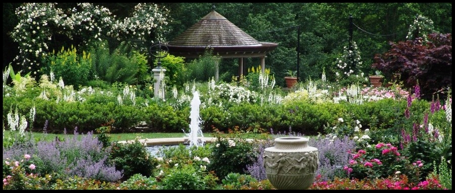 Morris Arboretum -Philadelphia, PA -
