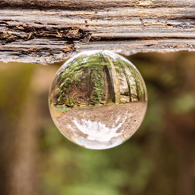 Had a chance to play with my @lensball - what a cool perspective!  #jcphotography #lensball #naturephotography #hockinghillsstatepark