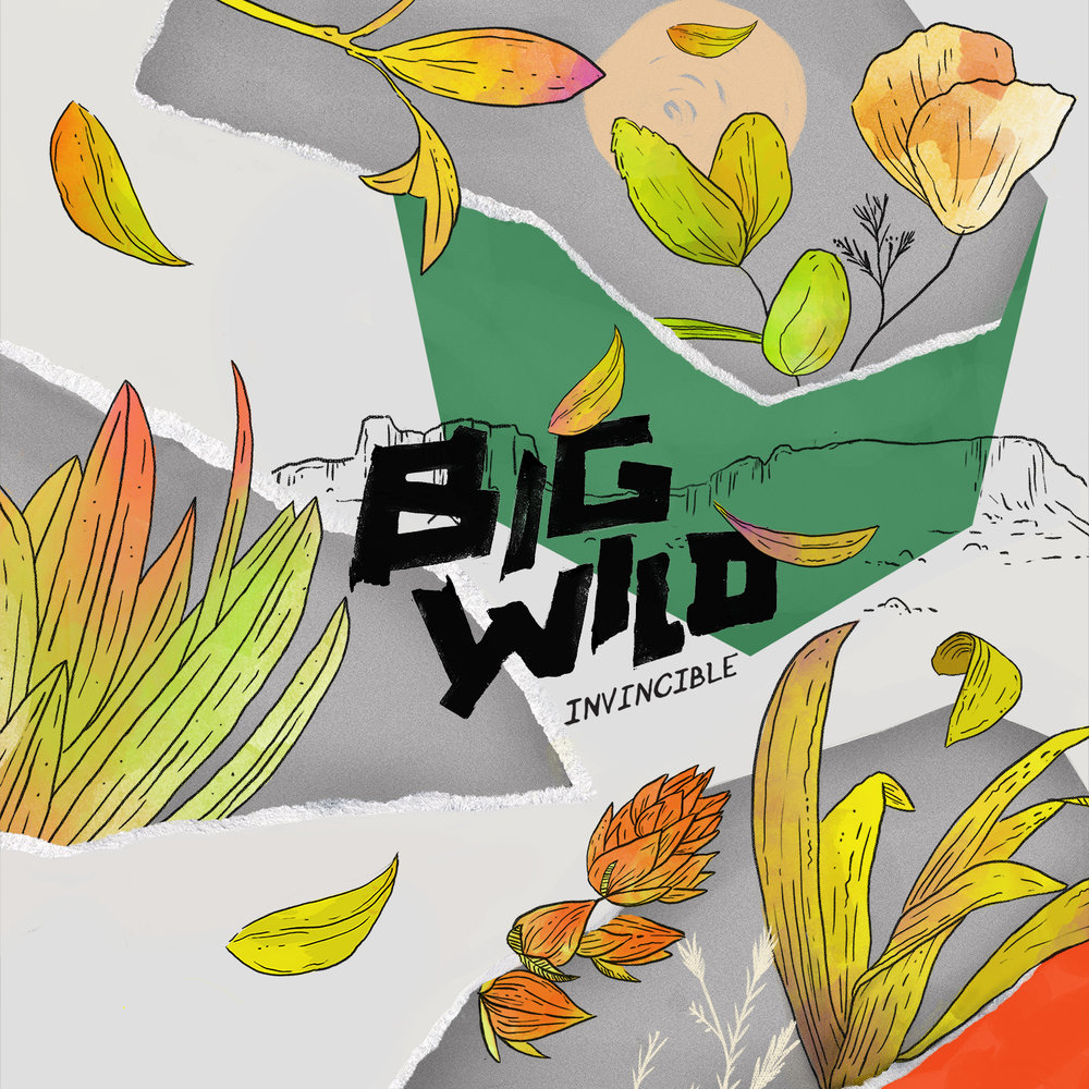 "<p class=""sid"">FFC017</p><p>BIG WILD - 'Invincible' EP</p>"