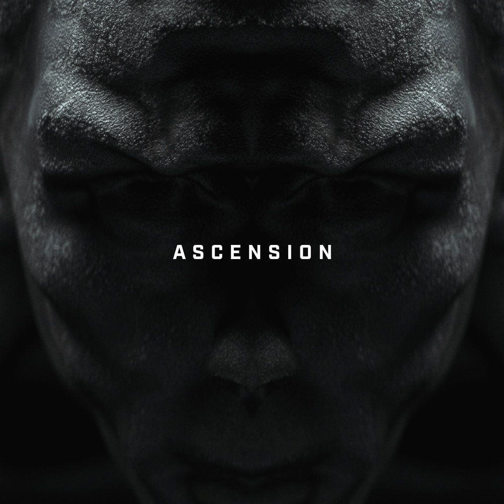 "<p class=""sid"">FFC030</p><p>Big Wild - ""Ascension""</p>"