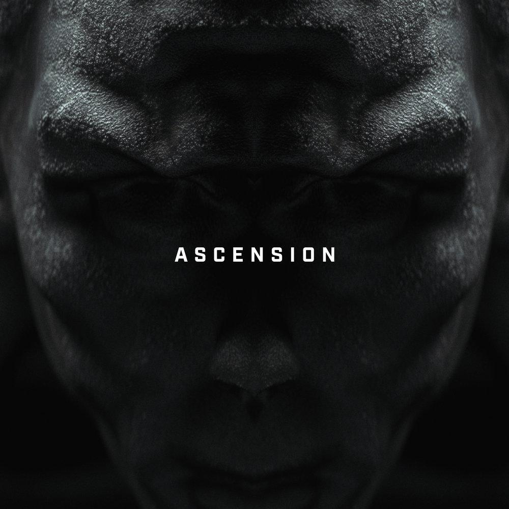 "<p class=""sid"">FFC030</p><p>Big Wild - ""Ascension""</p>"