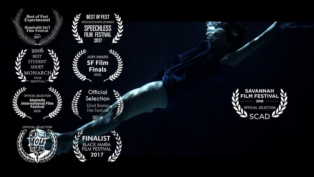 Submergence (2016)