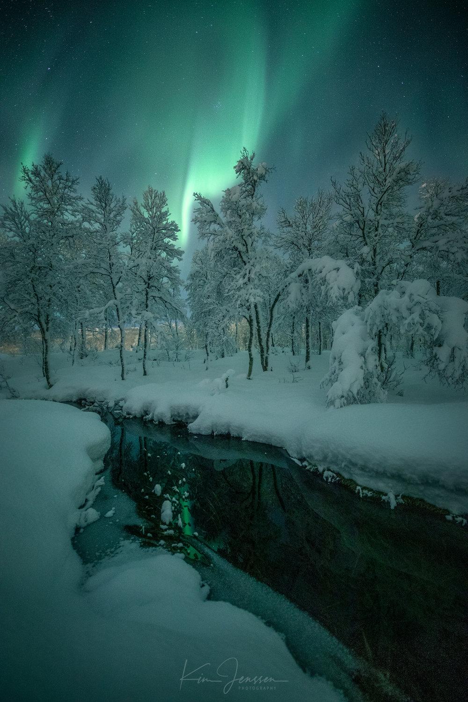 Aurora_solli_19.jpg