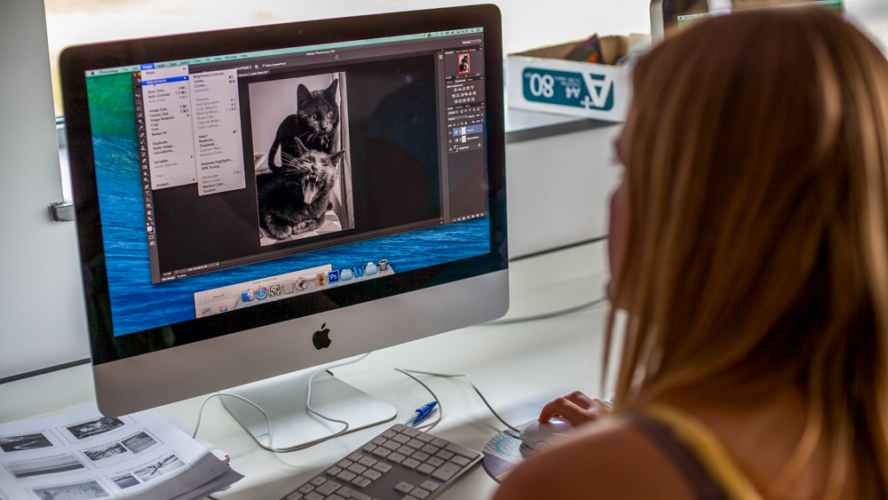 Photoshop course Essex
