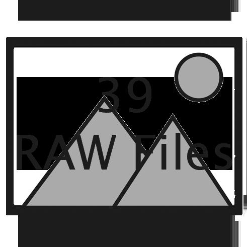 39 RAW files