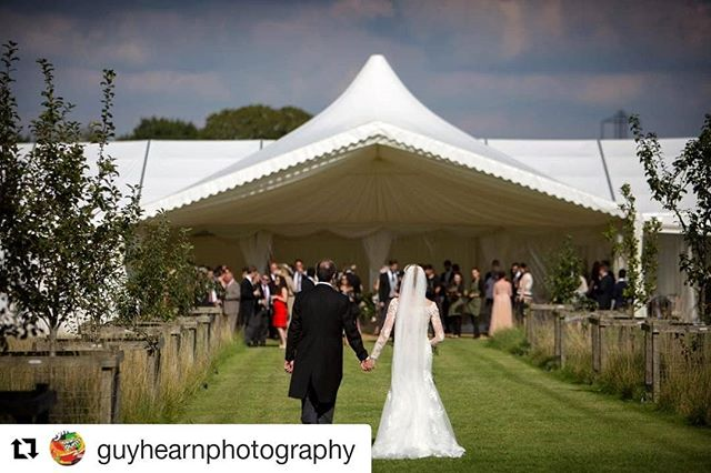 @guyhearnphotography  captured this amazing moment and shot of a wedding we provided the Marquee for. #weddingphotography #itsallabouttheentrance #weddingmarquee #peakedtent #brideandgroom #eventprofs #boxfresh