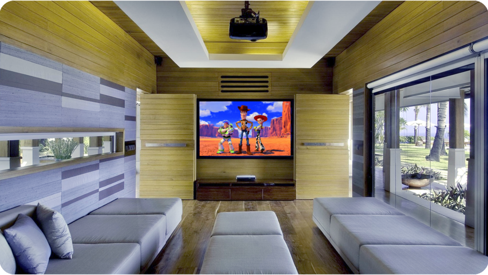 Toy Story Home CInema