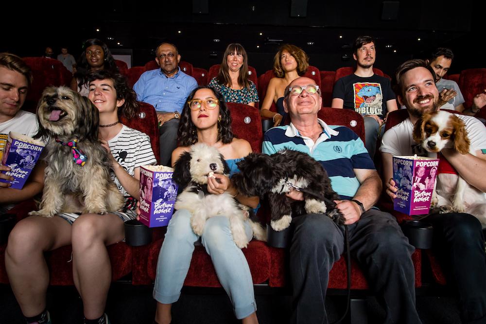 Dog Cinema.jpg