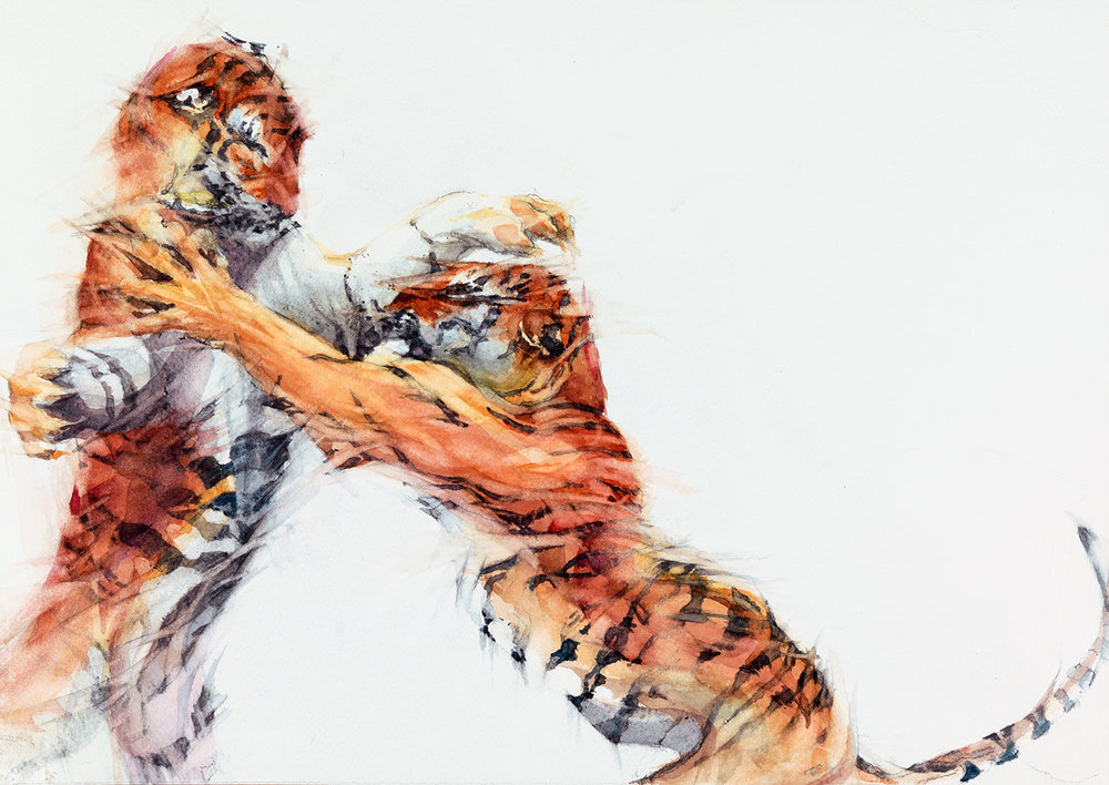 """Cat Passion Watercolour (1)   h. 15"""" w. 21"""" (h. 38.20cm w. 54.40cm)"""