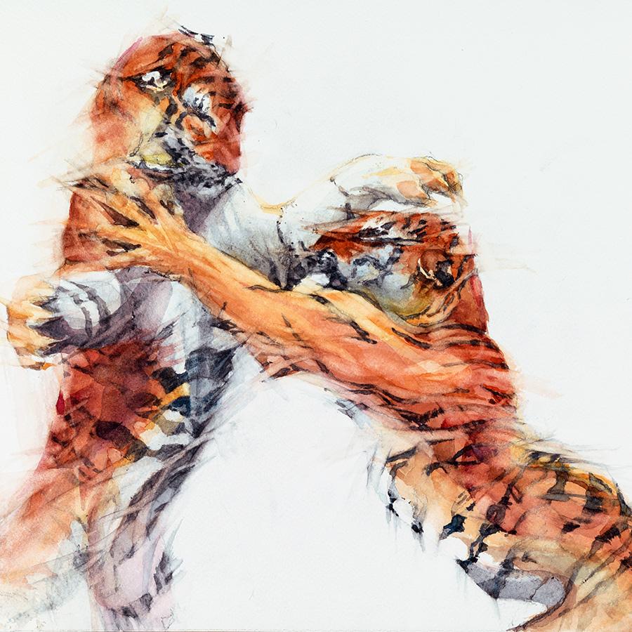 Big Cats & Their Prey -