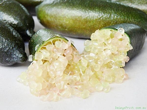 12 Finger-Lime-Judys-Everbearing-106.jpeg