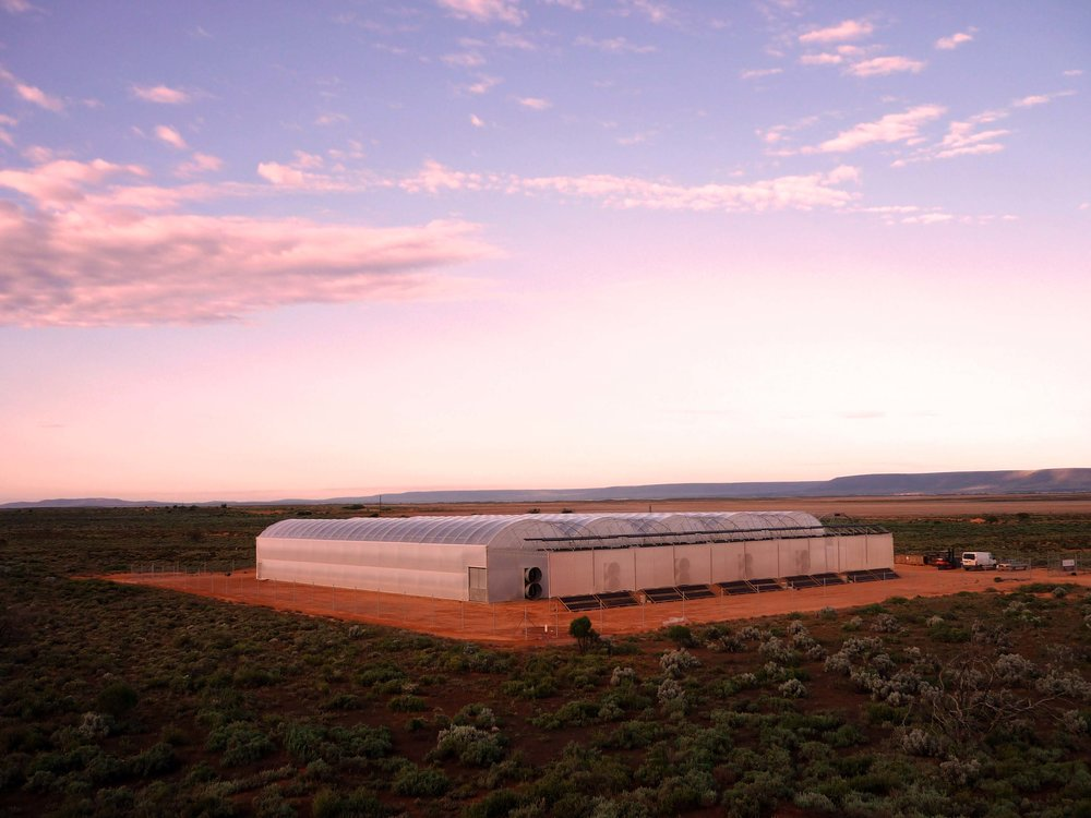 Pilot Seawater Greenhouse built in Port Augusta, Australia in 2010. Now operated by Sundrop Farms.