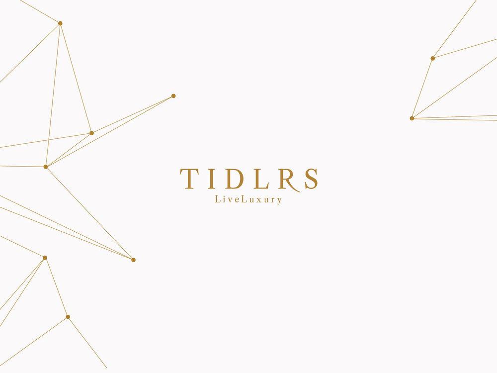 Media Kit Design / Copywriting     Tidlrs