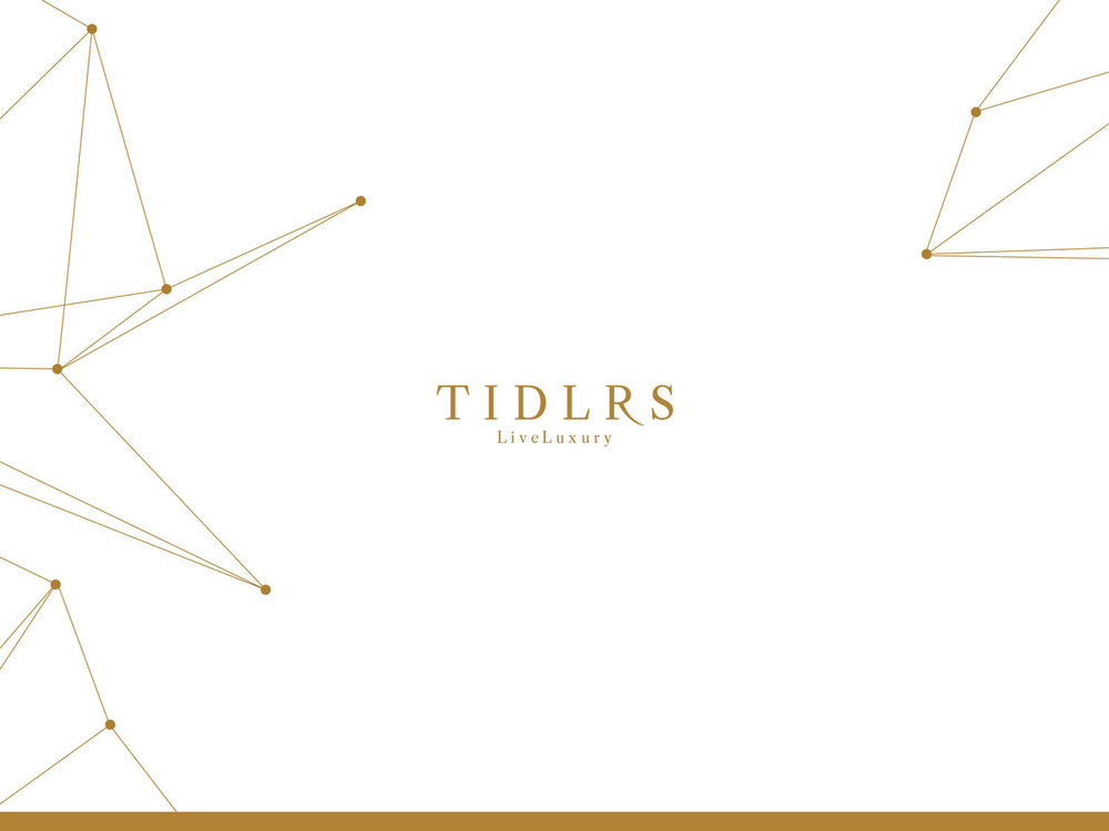 Strategy Consulting / Editorial / Design     TIDLRS