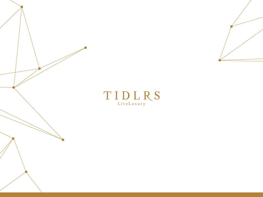 Media Kit Design / Editorial Content / Photography     Tidlrs