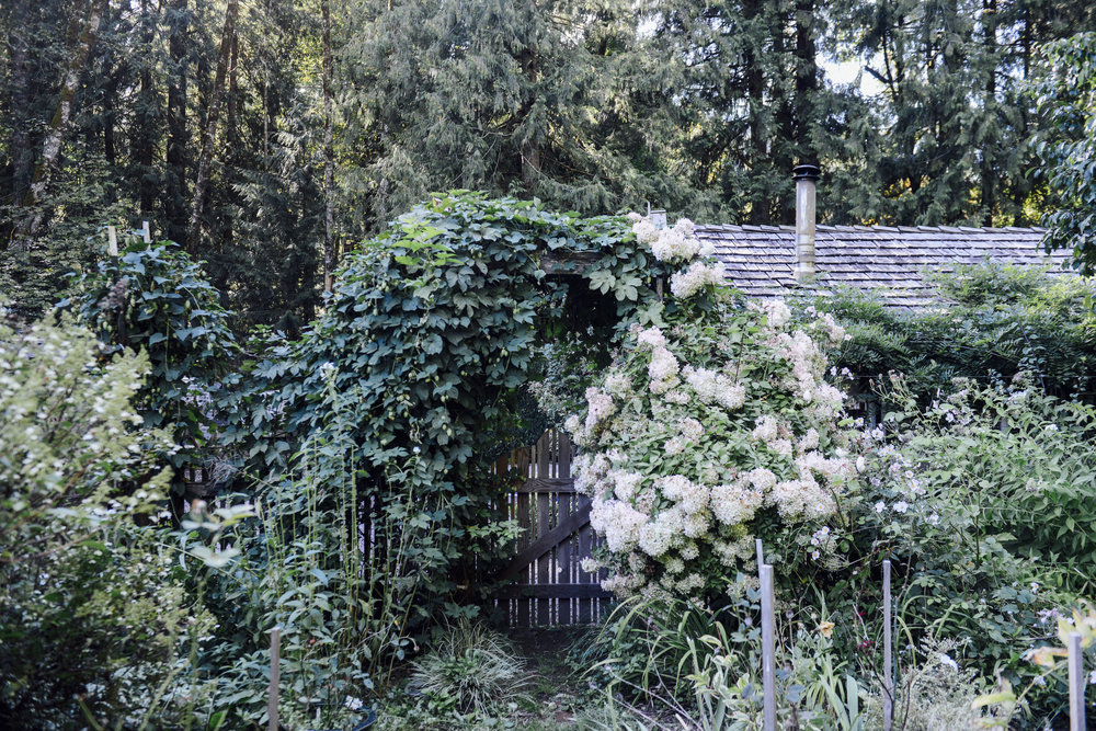 Garden Gate.jpg