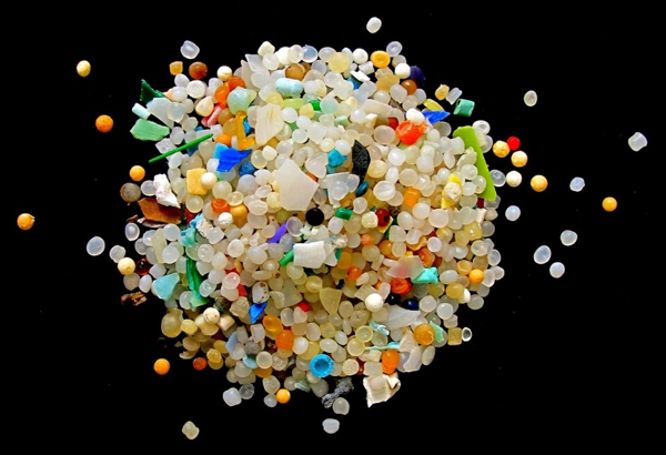 Microplastics collected from a sandy shoreline in Europe; Source: Current Biology, Wright et al.