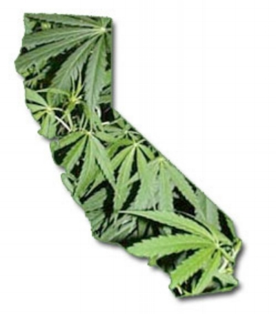 Legal to possess and grow weed in California