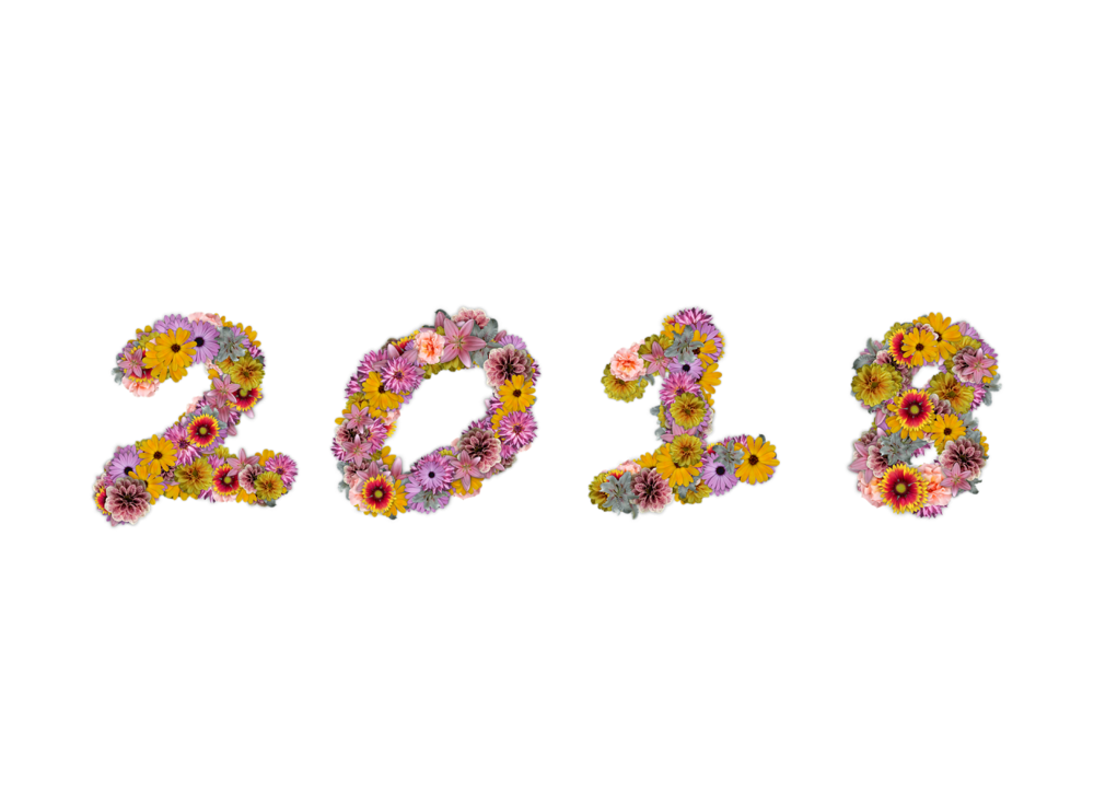 New Year 2018.png