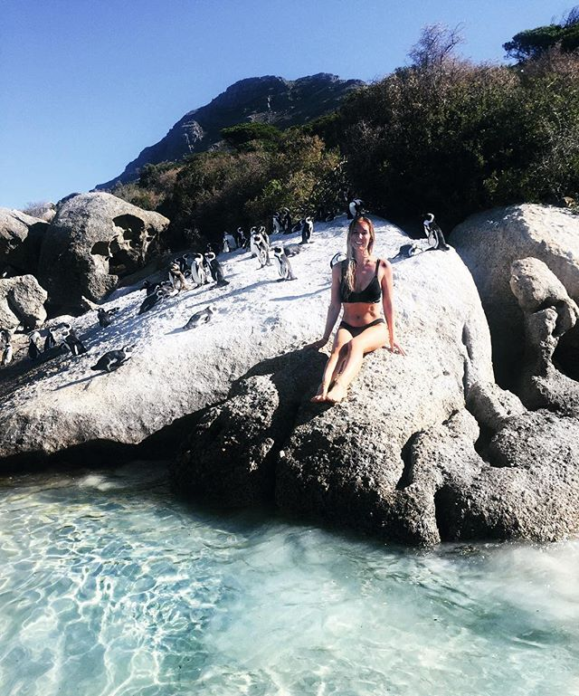 Life got you down? Hop a train down the Cape Peninsula coastline and swim between huge granite boulders with a colony of wild African penguins 🐧🖤➕ #doctorsorders
