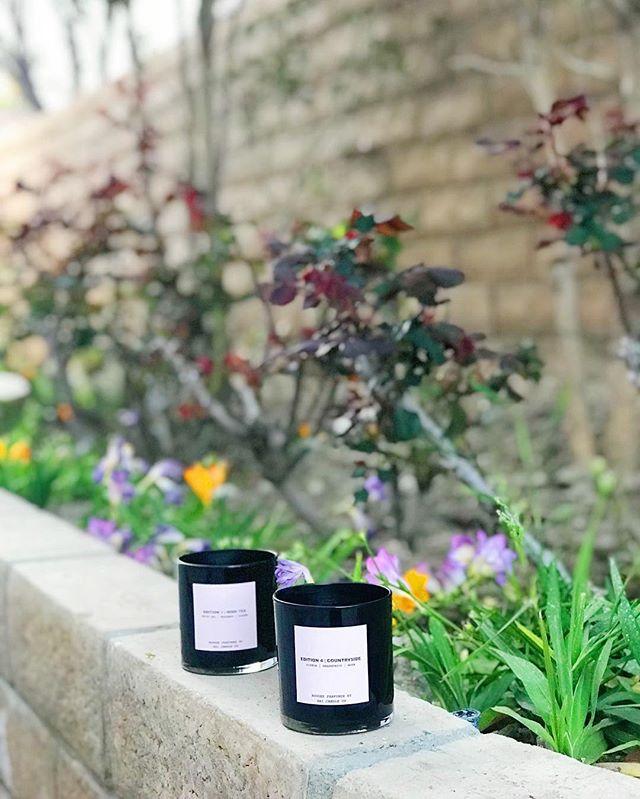Feeling those spring vibes 🌸🌼🌻🌺 website restocking next week!! • • • • • • • • #springflowers #springbreak #coconuttrees🌴 #candlelightdinner #candlelight #beachlife #flowerpower🌸 #flowers #homestyle #home #blooms #scent #eveningstroll #orangeblossom #peony #roses #lovers