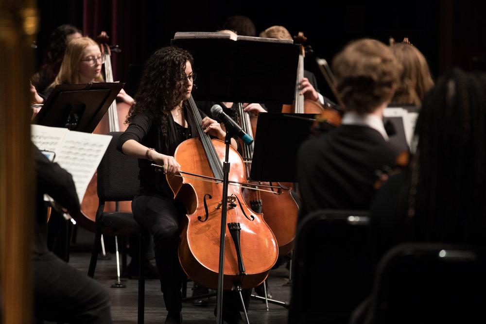 symphony-orchestra---feb-2018_26314940997_o.jpg