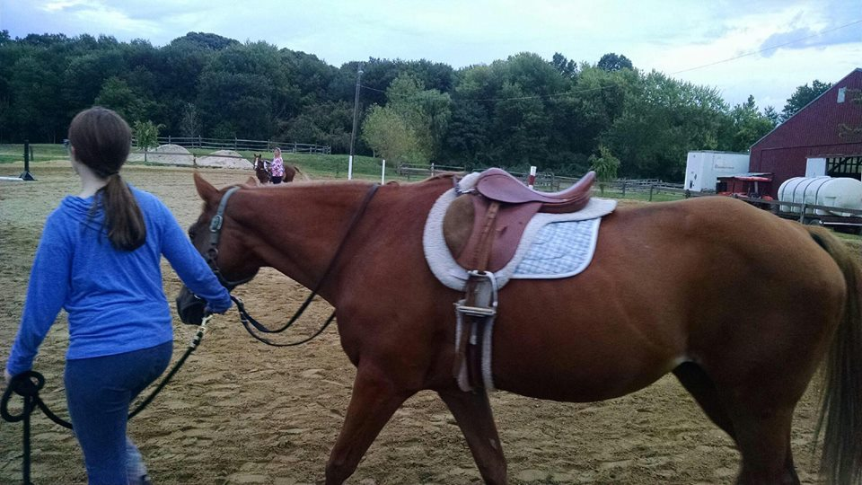 Long Island Riding for the Handicapped    - Purchased a horse to be used at this therapeutic riding program for children with special needs.  The horse allows sensory input, balance training, and core strengthening for children with special needs.
