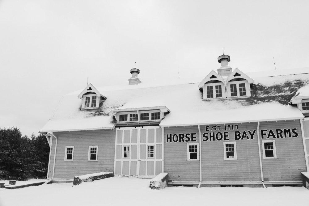 Horseshoe(B&W).jpg