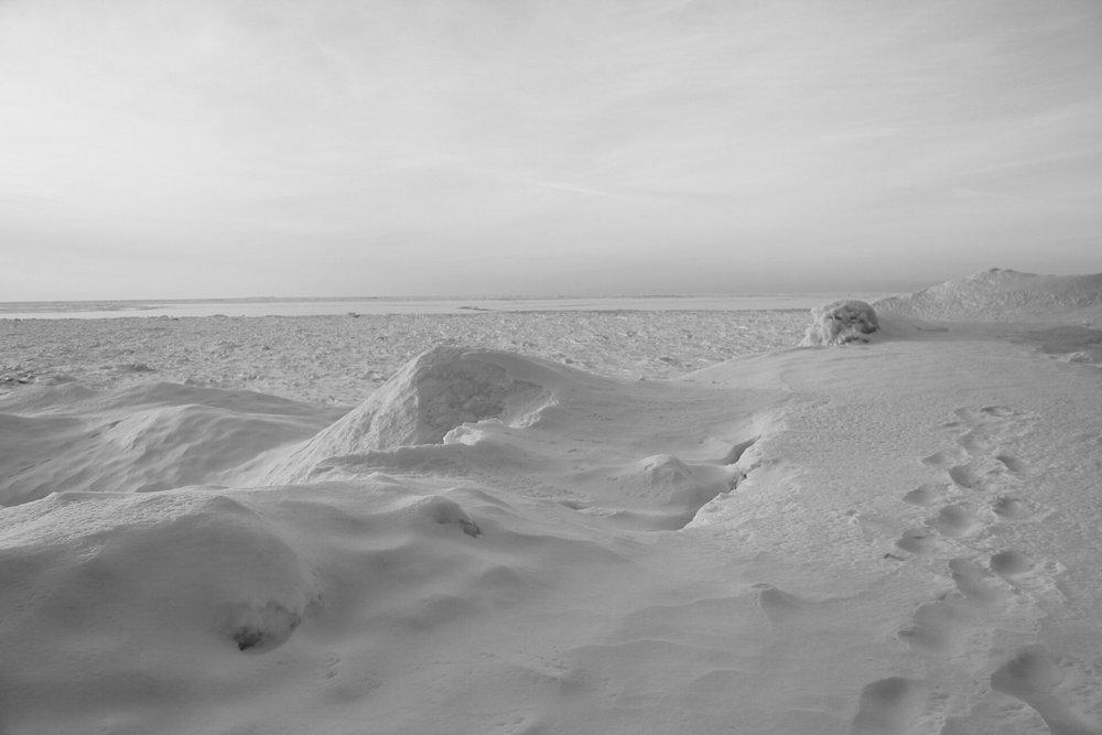 snow(b&w).jpg