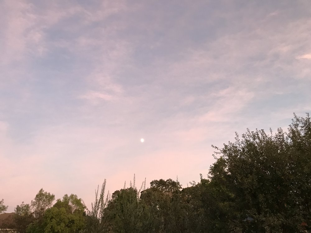 A beautiful picture of a pink sky and a beautiful moon to end our weekend!