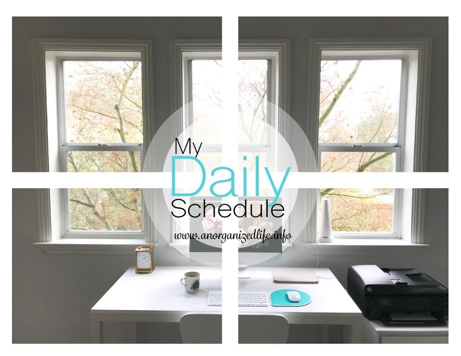 Daily-schedule-Pint.jpg