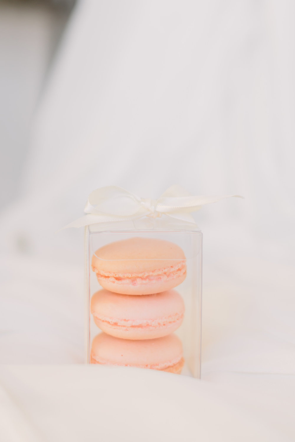 macaron gift with bow