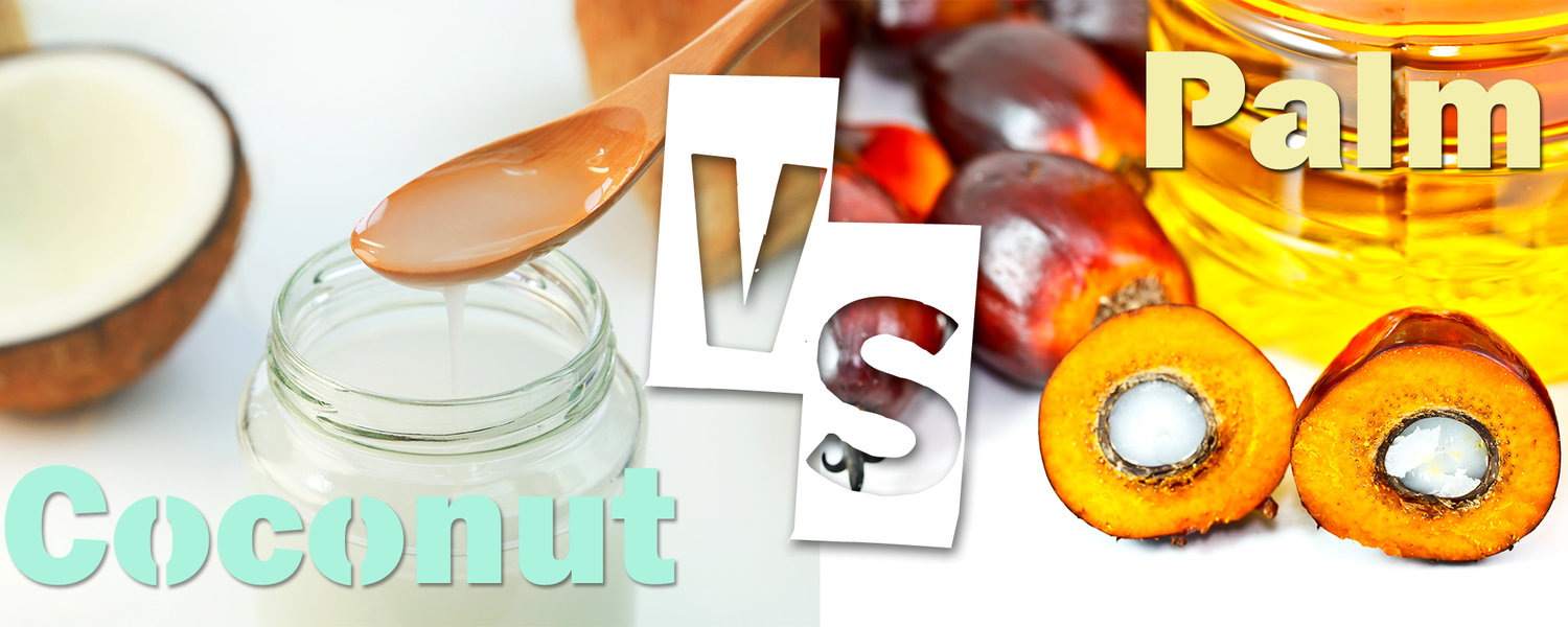 COCONUT vs  PALM MCT OIL — IRIE Isa Regal Intl Exports