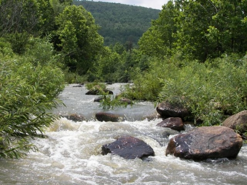 Lower Mountain Fork River