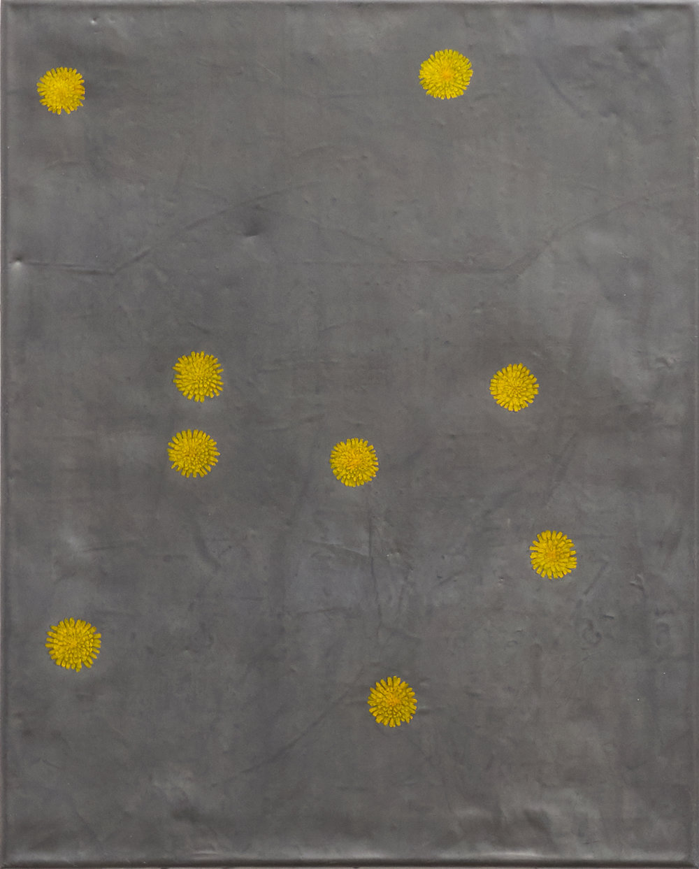 tarashaquq (field)  2016 watercolour, lead and tacks on wood 20 x 16 inches