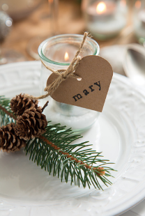 I really love this simple idea. Add some winter pine and pinecones to the plate. Then add small glasses with filler, a tea light and add a name tag for each guest. Get your name tags at Target.