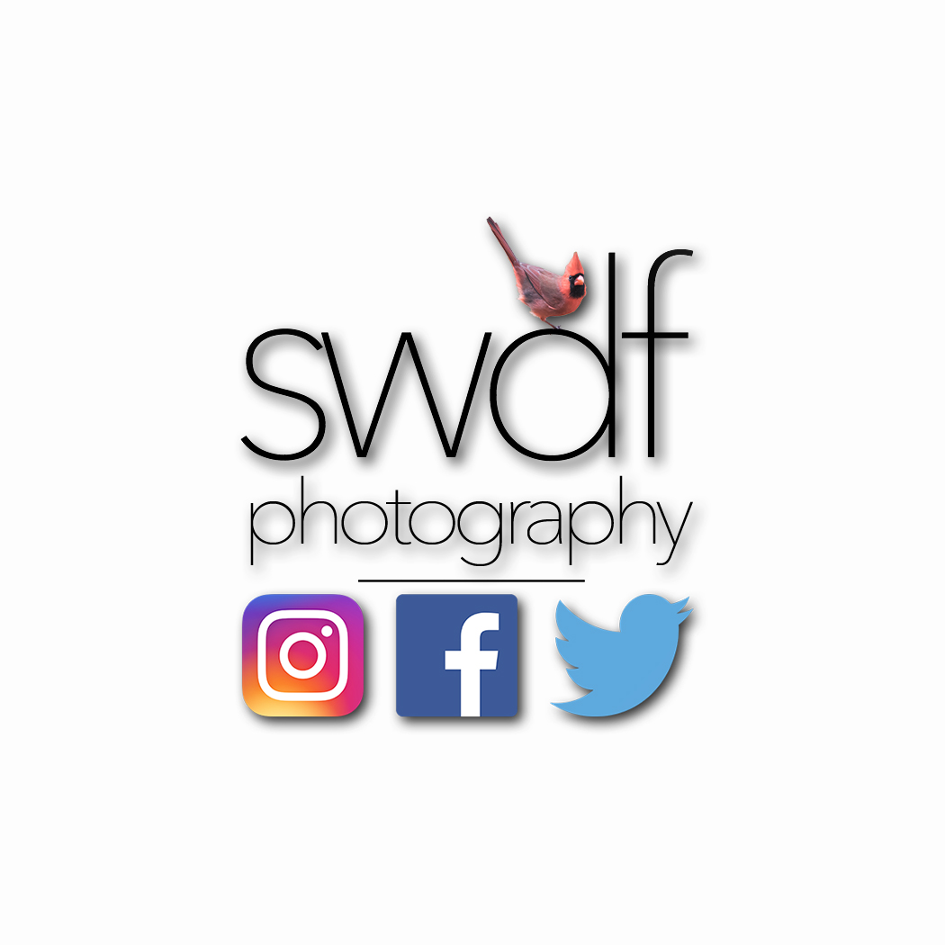 SWDF Photography